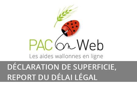 Déclaration de superficie, report du délai légal