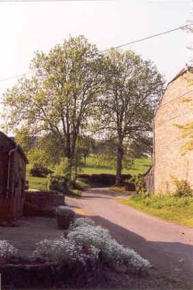 Herleuvaux