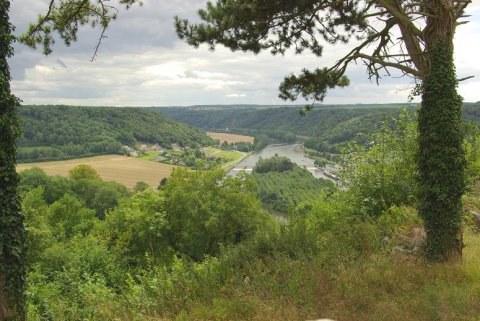 Bois de Devant Houx